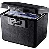 SentrySafe 1170 Fireproof Box with Key Lock 0.61 Cubic Feet, Black