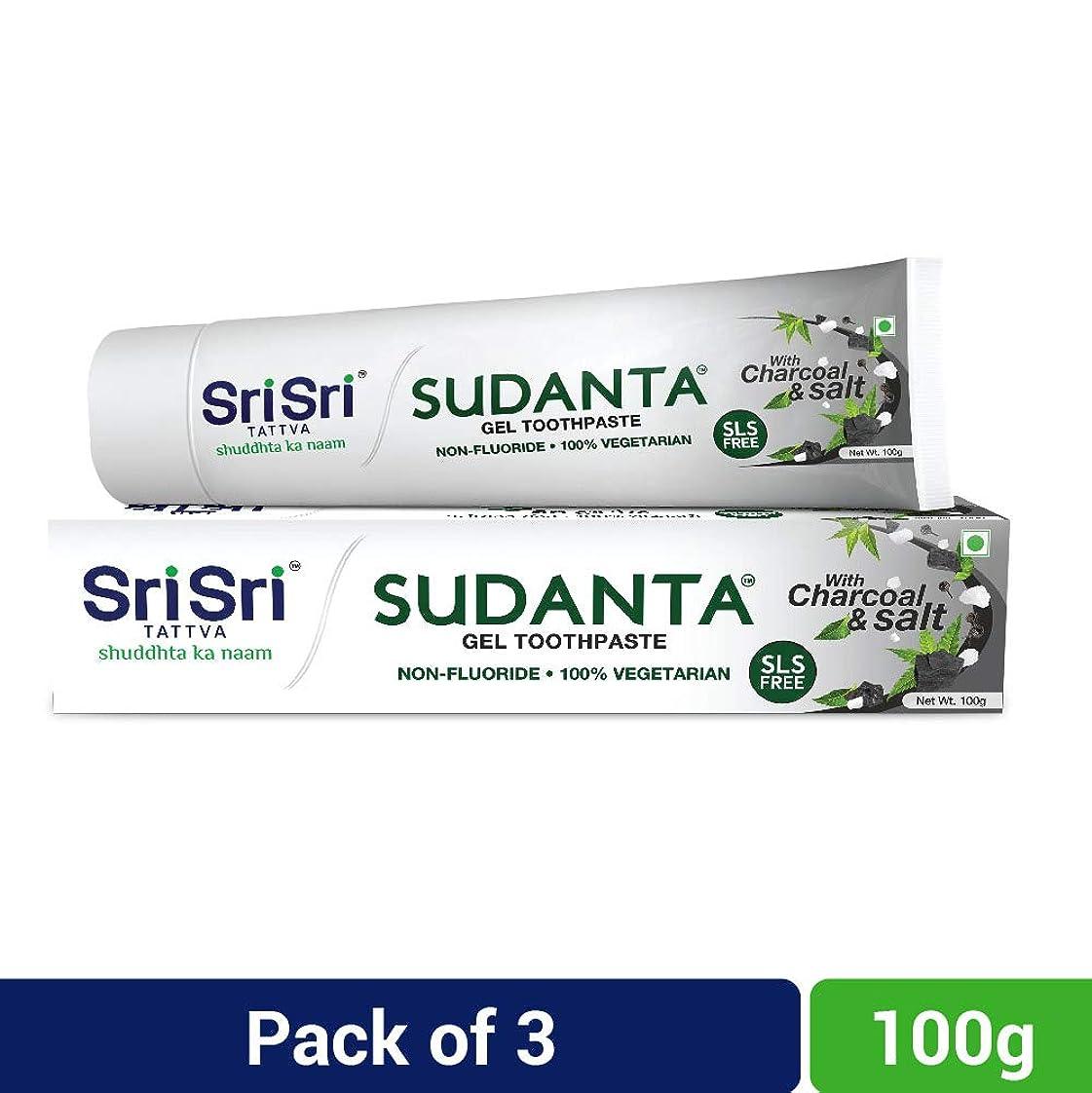 ギャンブル優遇まだらSri Sri Tattva Sudanta Gel Toothpaste, 300gm (100gm x Pack of 3)