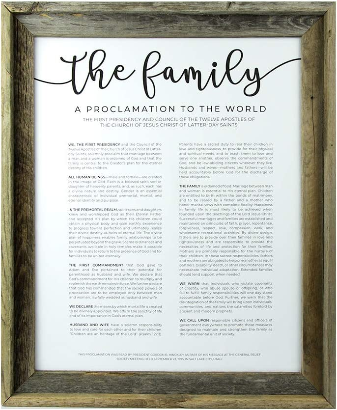 Framed LDS Family Proclamation - New popularity 11x14 Frame Paper Easy-to-use Barnwood