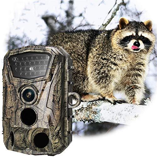 Jachtcamera, 16 MP, 1080p buiten, HD, waterdicht, infrarood, nachtzicht, jachtcamera.