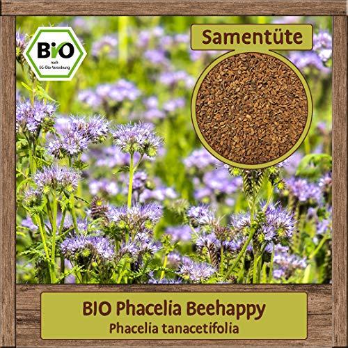 Samenliebe 5g BIO Phacelia Samen tanacetifolia Bienenweide Büschelschön Blumen-Samen einjährig Saatgut für ca. 5m²