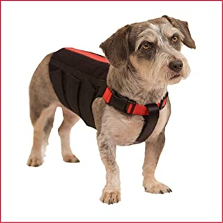 dog knee braces for luxating patella