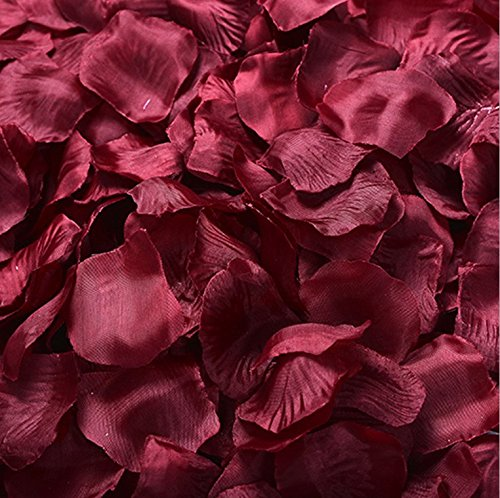 Adorona Fabric Silk Flower Rose Petals Wedding Party Decoration Table Confetti Package of 5000 (Wine)
