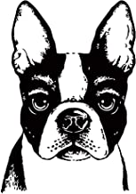 Wall Decals Vinyl Decal Sticker Mural Art Design Fawn Boston Terriers Face Veterinary Pets Shop Chu778