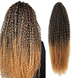 Water Wave Crochet Hair Synthetic Brazilian Braids Curly Crochet Hair 3 PACKS Afro Kinky Curly Soft Ombre Honey Blond Braiding Hair Extensions Deep Curly Crochet Hair For Women (20 Inch (Pack of 3), T1b/27#)