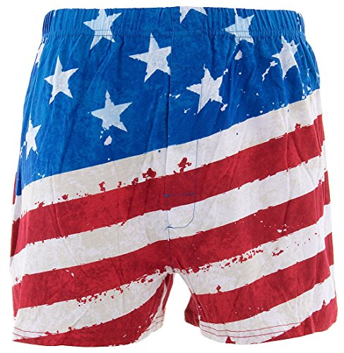 Briefly Stated Men's Painted USA Flag Boxer Shorts M