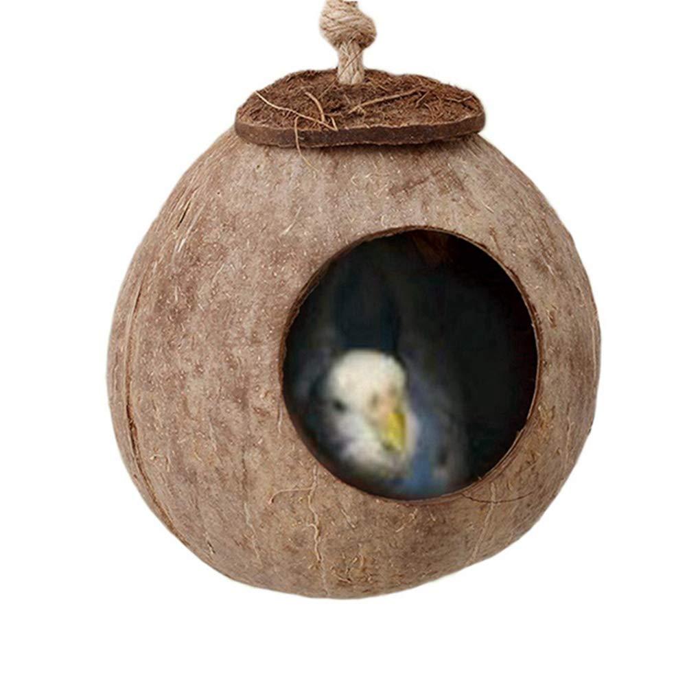 SimpleMfD Naturals Coco Hideaway con Escalera de Juguete para pájaros, Nido de cría de cáscara de Coco para pájaros, Juguete para Escalera de hámster, Juguete para Columpios de pájaros: Amazon.es: Productos para