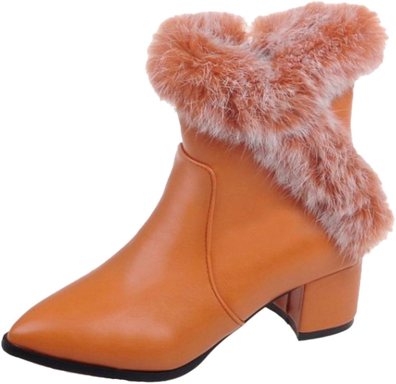 RizaBina Women Fashion Warm Boots Zipper