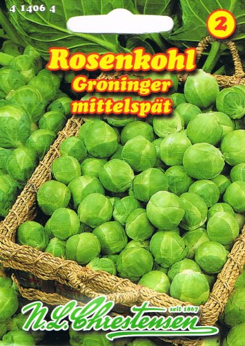 Rosenkohl Groninger mittel spät