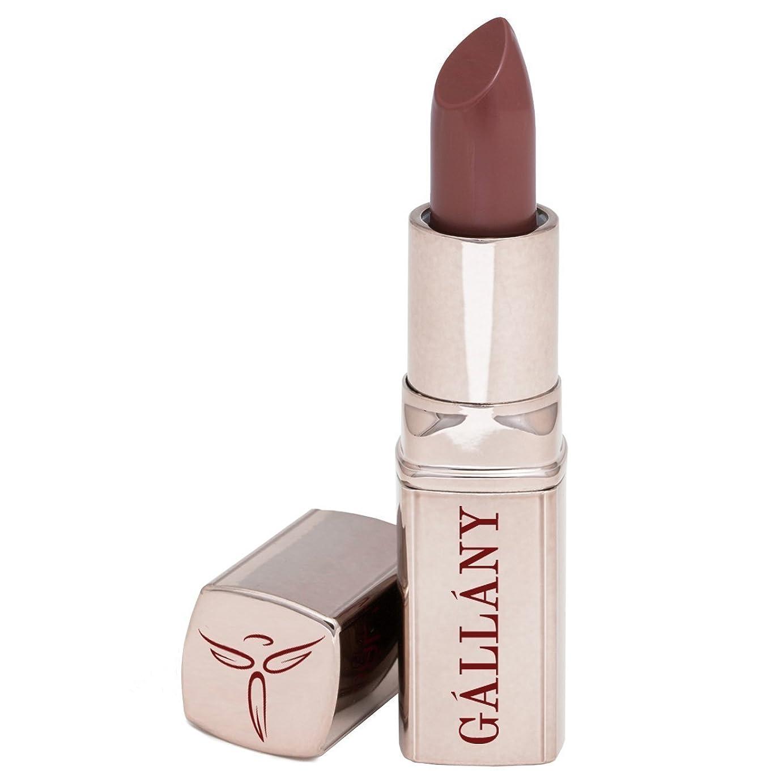 憂慮すべき充電乳製品Gallany Cosmetics セミマットリップスティック、女の子について町ウォームブラウン 名士