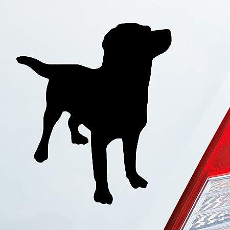 Auto Aufkleber In Deiner Wunschfarbe Labrador Labbi Retriever Dog Hund Dog Tier 10x12 Cm Autoaufkleber Sticker Auto