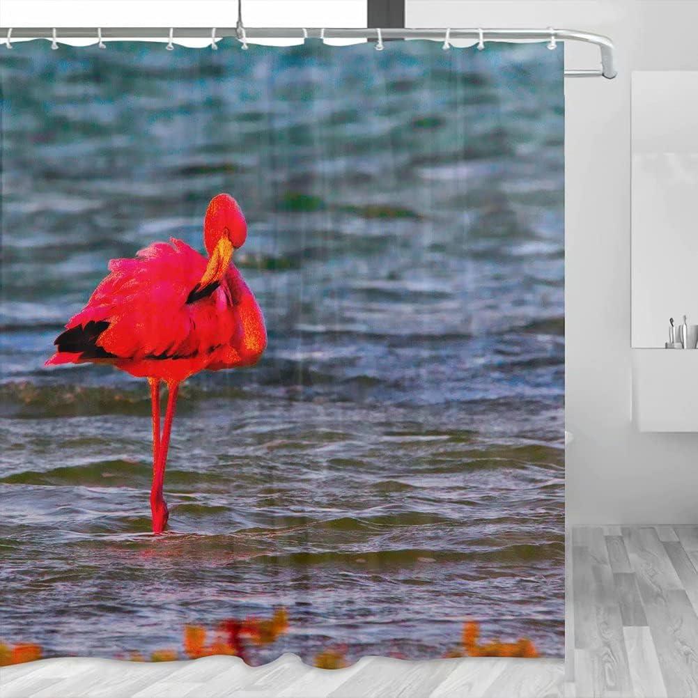 Bonaire YL-00737 - Cortina de ducha de viaje con ganchos de poliéster (72 x 72 pulgadas)