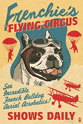 French Bulldog, Retro Flying Circus Ad 56344 (9x12 Art Print, Wall Decor Travel Poster)