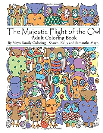 The Magnificent Flight of the Owl