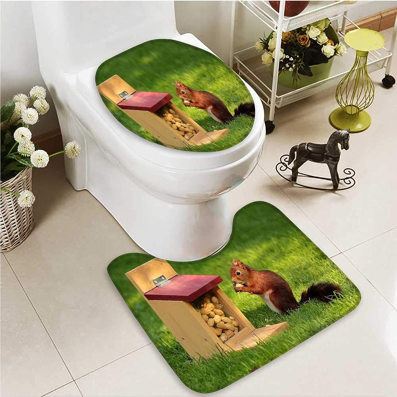 Printsonne Cushion Non-Slip Toilet Mat A Squirrel on The Grass Soft Non-Slip Water