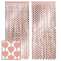 Xo Fetti ローズゴールドハートホイルカーテン - 2枚 3フィート x 7フィート   バレンタインデー メタリック フリンジ ティンセル バチェロレッテ パーティー装飾 誕生日の背景 ウェディングフォトブース 婚約 ブライダルシャワー