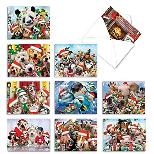 The Best Card Company - 10 Christmas Animal Cards with Envelopes - Boxed Assorted Season's Greetings, Holiday Set (4 x 5.12 Inch) - Merry Christmas to Zoo M6652XSG
