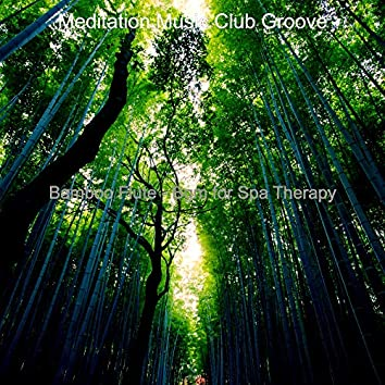 Bamboo Flute - Bgm for Spa Therapy