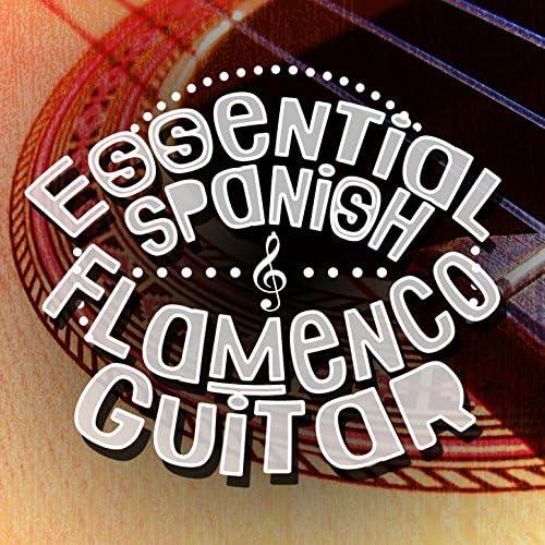 The Acoustic Guitar Troubadours, Flamenco Guitar Masters & Guitarra Española, Spanish Guitar