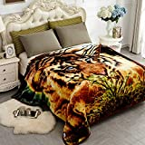 """JYK Thick Korean Faux Mink Fleece Blanket 77""""x87"""" and 5 LB Mink Blanket - 2 Ply Reversible 520GSM Silky Soft Plush Warm Blanket for Autumn Winter (Queen, Tiger)"""