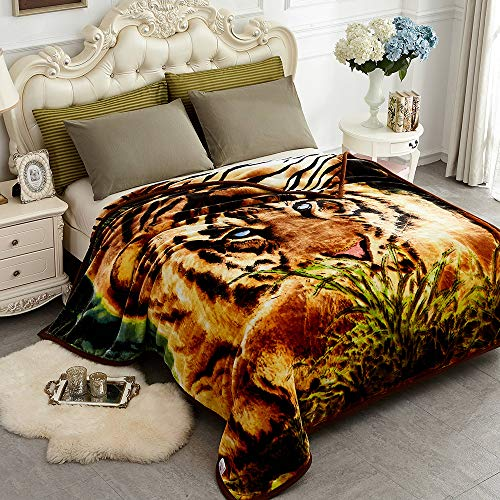 JYK Heavy Korean Mink Fleece Blanket - 2 Ply Reversible, Tiger, Size Queen