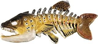Best brown trout skeleton Reviews