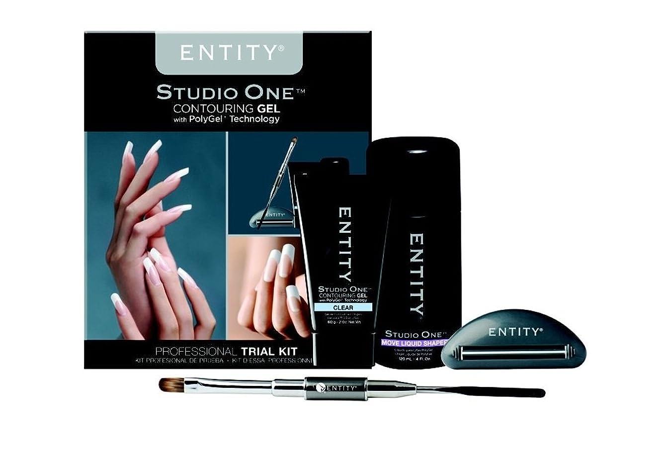 ペダル最後の勢いEntity - Studio One - Contouring Gel Professional - PolyGel Trial Kit
