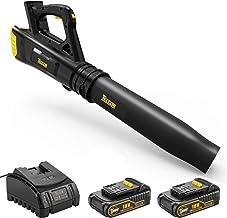 TECCPO Soplador de Hojas con Batería, 2 Baterías de 18V 2.0Ah, Ventilador Axial, Interruptor de 2 Velocidad 9000/15000rmp-TDAB01G