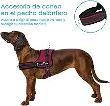 Amazon.es: arnes de tiro para perros