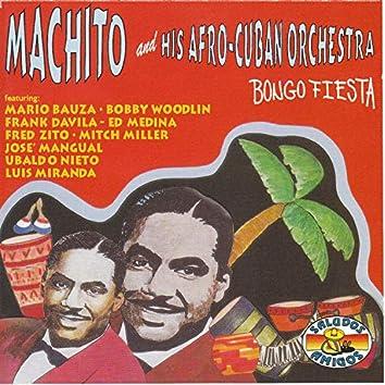 Bongo Fiesta