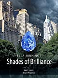 Blue Phoenix (Shades of Brilliance Book 3) (English Edition)
