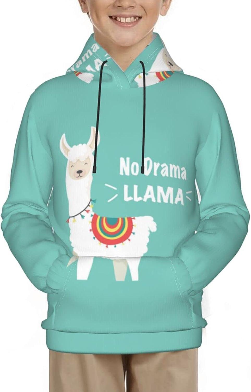 Llama Hoodies, Fashion 3d Print Sweatshirts, with Pocket Long Sleeves Pullover, for Boys Girls