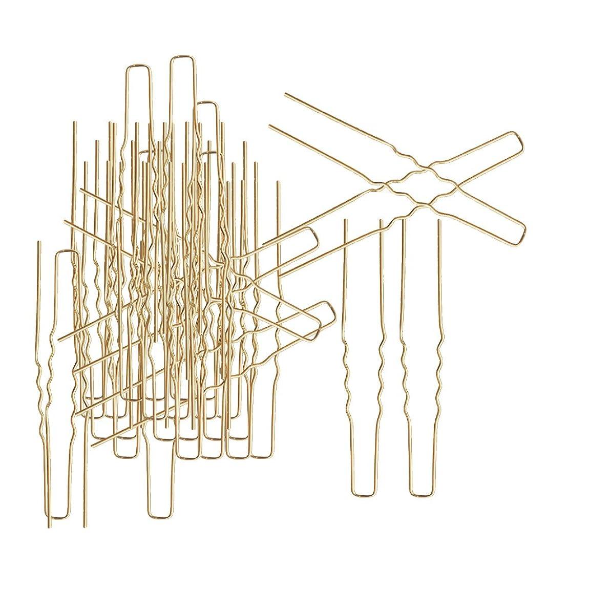 縫う試験教えるSONONIA ヘアピン ツール 髪デザイン DIYヘアスタイリング U字形 ピン形 日常アクセサリー 約50本