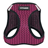 xxs puppy harness - Voyager Step-in Air Dog Harness - All Weather Mesh, Step in Vest Harness for Small and Medium Dogs by Best Pet Supplies - Fuchsia, X-Large (Chest: 21