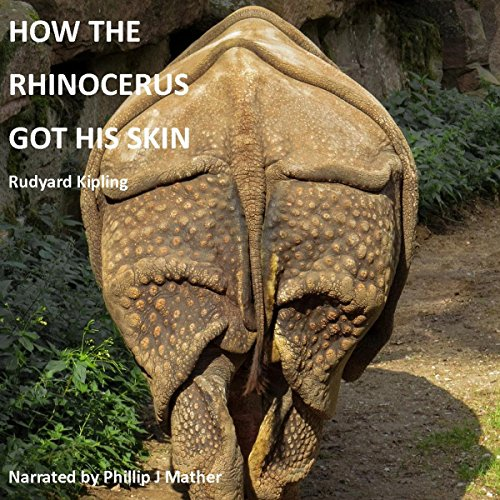How the Rhinoceros Got His Skin audiobook cover art