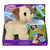 FURREAL FRIENDS 'Pax/My Poopin' Pup Toy (Multi-Colour)
