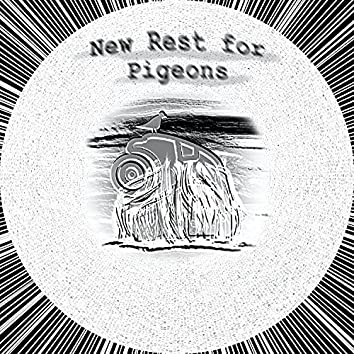 New Rest for Pigeons
