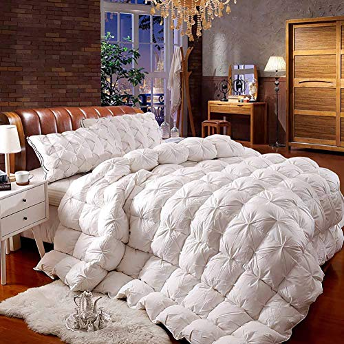 Best Deals! ZJING Autumn and Winter Luxury White Goose Down Quilt Core, Super Warm and Soft Home Qua...