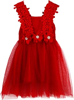 JNKLWPJS Baby Girls Tutu Dress Backless A-line Lace Back Flower Party Tulle Dress