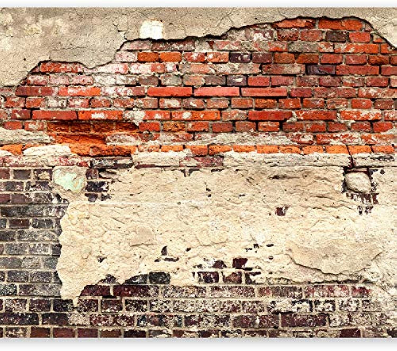 Murando - XXXL Fototapete 600x280 cm - Gre Format 6m - Vlies Tapete - Moderne Wanddeko - Design Tapete - Ziegel Ziegelstein f-A-0503-x-f