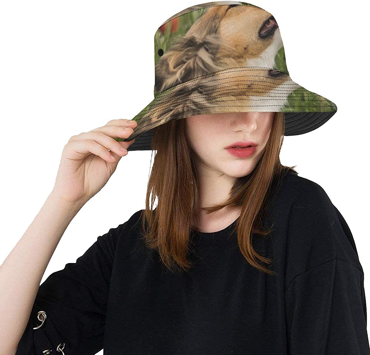 Large Fishing Hat Cute Gold Rough Sniffing Max 60% OFF Collie Summer Indefinitely Uni Red