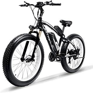 ecotric fat tire bike