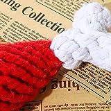 Da.Wa Mini Zahnbürste Form Hund Kaut Hundespielzeug Sprachspielzeug,Gummi,Zufall Farbe - 2