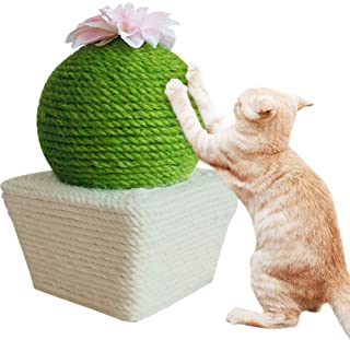 PLAFUETO Funny Cactus with Flower Cat Scratching Post Cat Interactive Toys