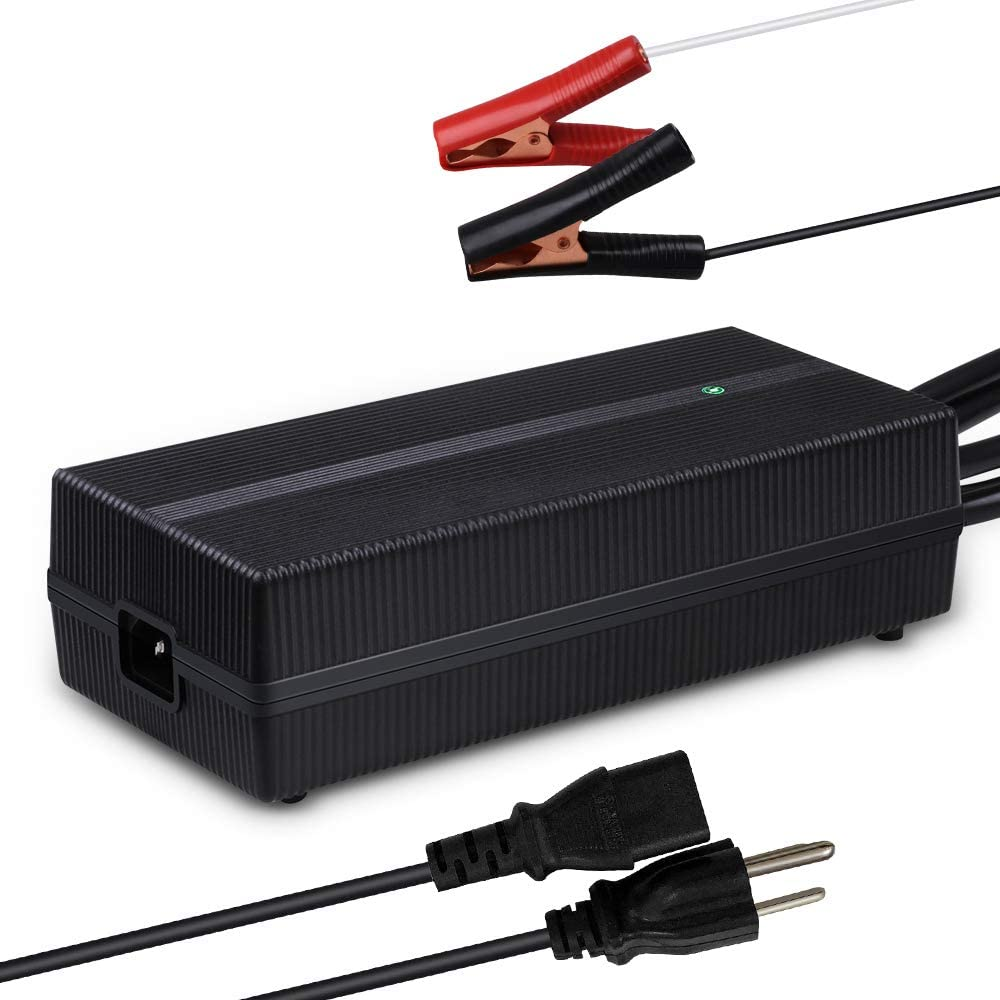 Renogy 12V 20A AC-to-DC Portable Battery Charger with 12AWG Alligator Clips for Lithium-iron Phosphate Batteries