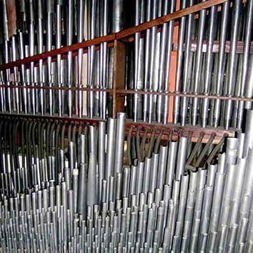 organ reworks