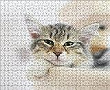 LHJOY Puzzle 3D Puzzle 500 Piezas Gatito Gato hocico Viendo Animales Regalo de cumpleaños 52x38cm