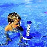 Zoom IMG-1 tfa dostmann piscina termometro neptun