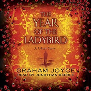 The Year of the Ladybird cover art
