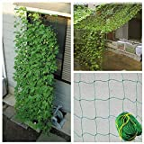 COLIBROX Durable Nylon Trellis Net Netting Plant Support for Climbing...